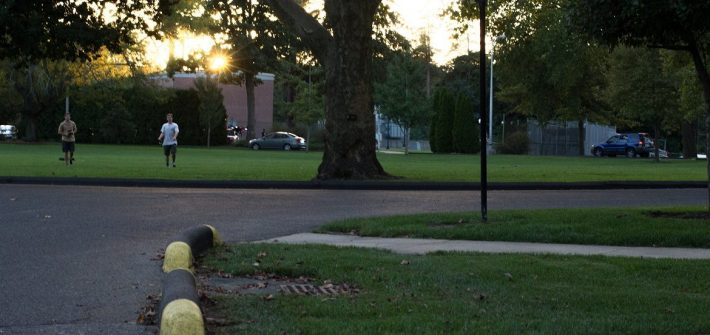 pavement of Bunce Circle with students playing frisbee on grass