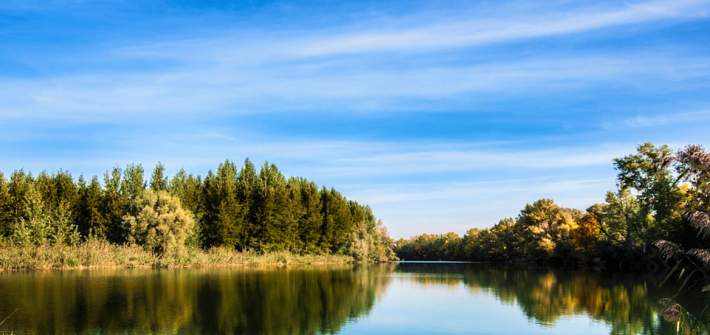 River with trees on the riverbank and blue sky with smooth white clouds