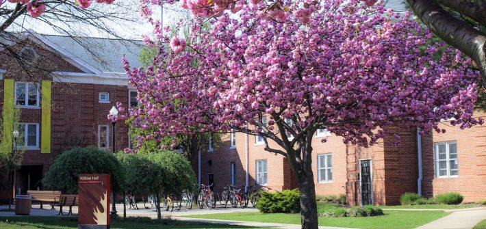 Rowan Universitys Willow Hall during Spring time