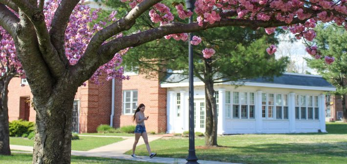 rowan university student walking outside willow hall during spring time