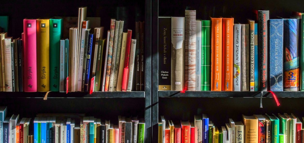 books aligned on a book case.