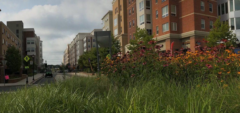Outdoor photo of Rowan Boulevard
