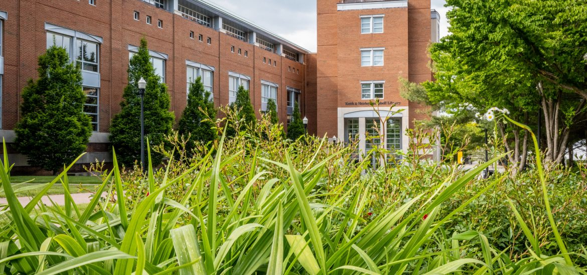Campbell Library from the grass